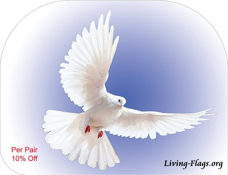 white dove - blue radiant heaven