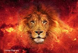 ETERNAL KING